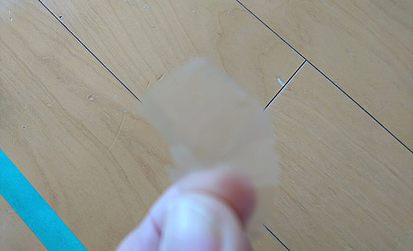 剥がれた塗膜片