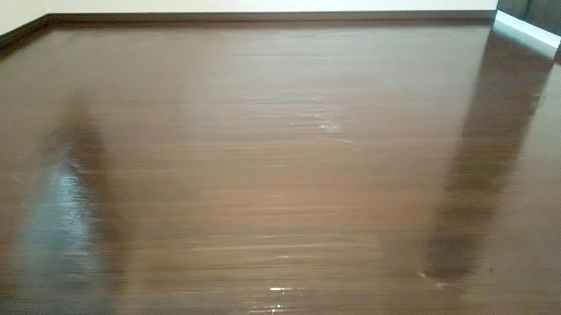 ワックス剥離剤を塗布したフロア